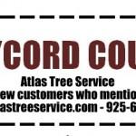 Atlas Tree Service