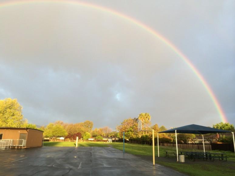 rainbow_kevins