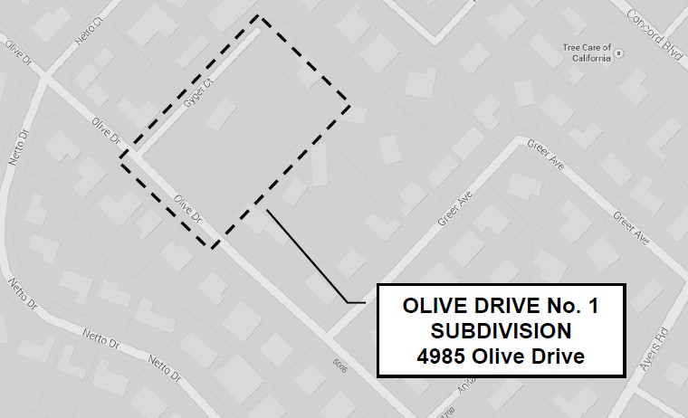olive_dr
