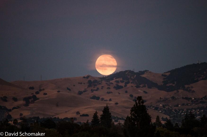 moon_david_schomaker