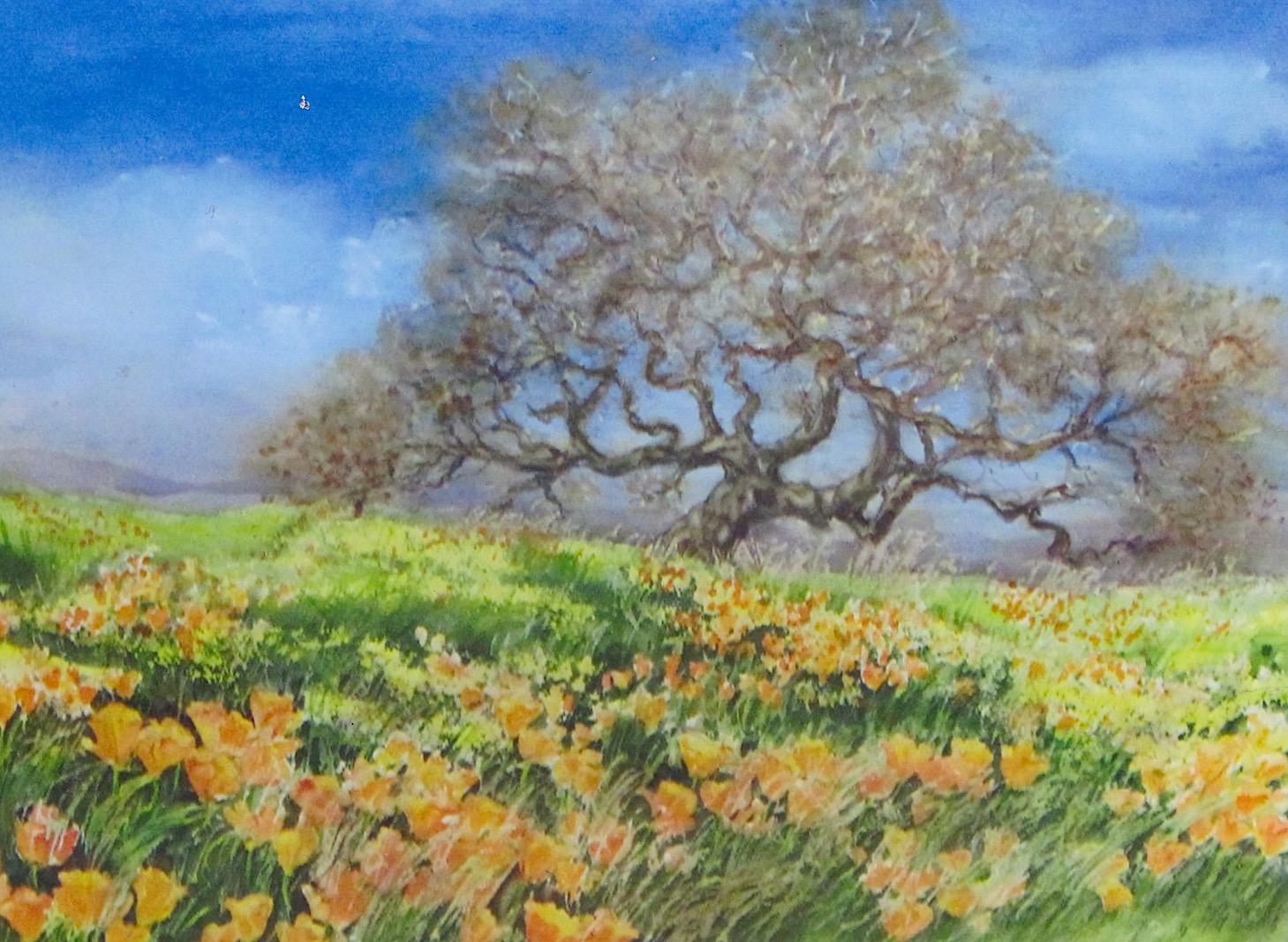 california springtime strout
