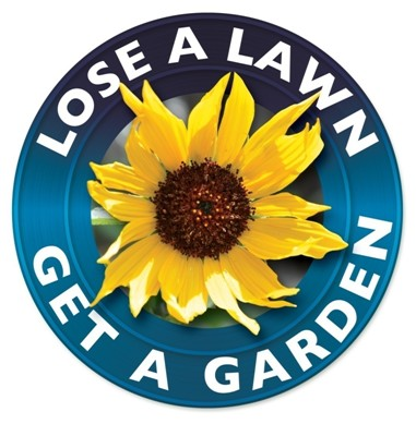 Landscape Workshop How to Replace Your Lawn with a Water